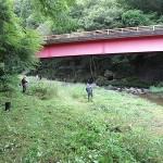 草刈り大作戦橋の下