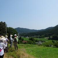 入谷の里山風景